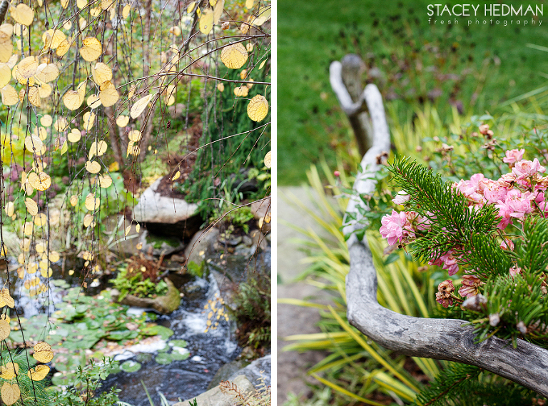 garden photography on cape cod