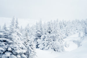 winter in the white mountains