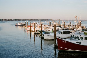 the harbor in provincetown